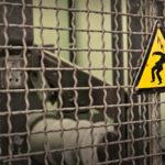 Quels sont les principaux risques électriques et comment les minimiser?